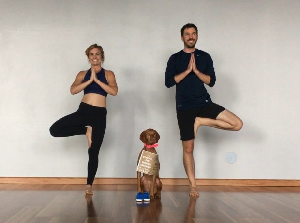 yoga baby pregnancy announcement