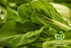 Woolworths_Brand WEB BOK
