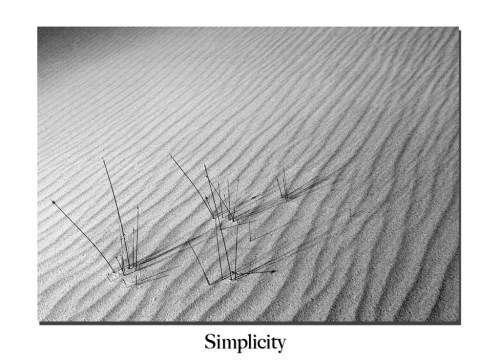 lancelin sand dunes, black and white, australian landscape photography, australian landscape photographer,