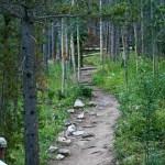 Lilly Pond Trail