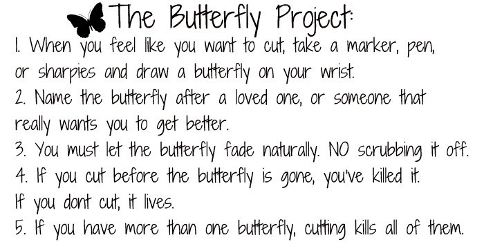 butterfly_project_by_cutebabykitty-d57hgis
