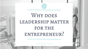 The entrepreneurship and leadership series: Part 1 - Why does leadership matter for the entrepreneur?
