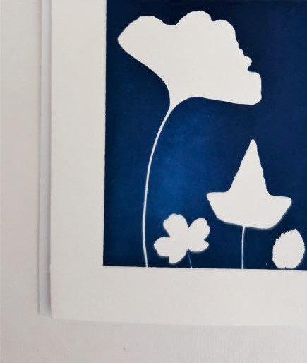 little card printing with the ancient technique of cyanotype or printing with the sun