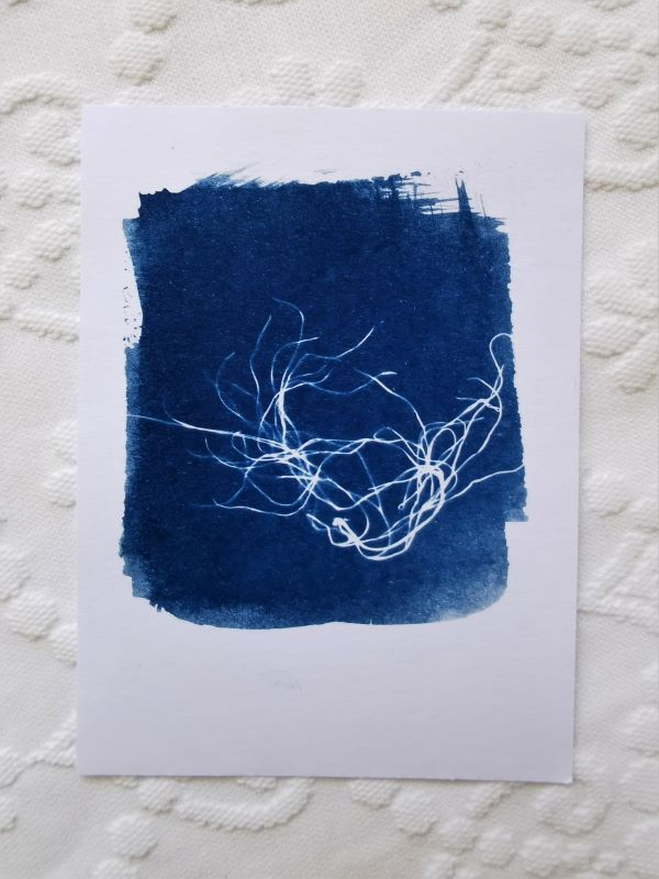 card printing with the ancient technique of cyanotype or printing with the sun