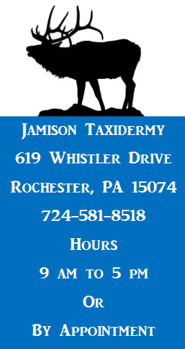 Jamison Taxidermy