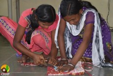 The current Adolescent Girls Program will finish in Spring 2015.