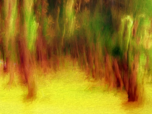 Merged Blur Photo-Painting of the Pine trees on Naiharn beach just after sunrise