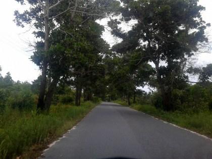 Jalan Menuju Pantai Kubu