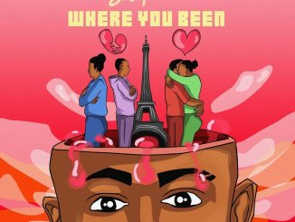 Sean Tizzle Where You Been EP ZIP DOWNLOAD