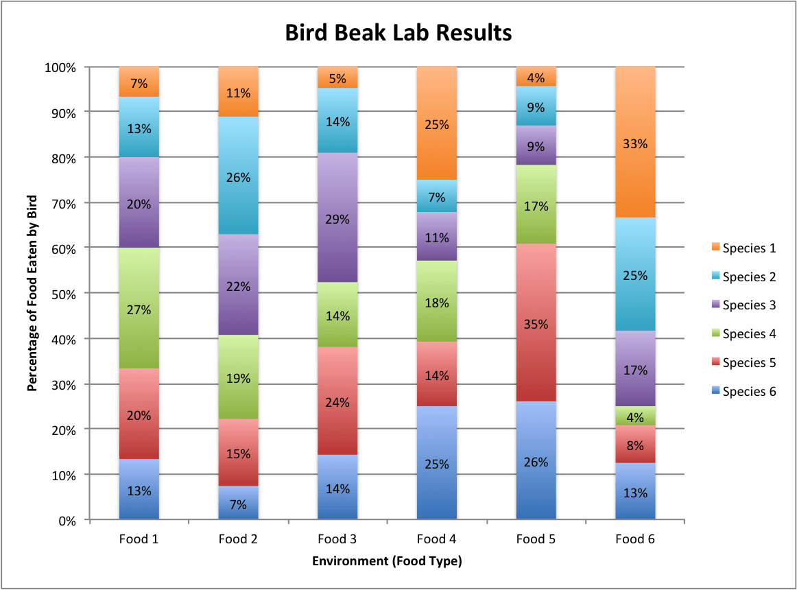 Bird Beaks Competition And Natural Selection