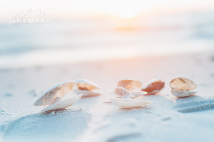 Ein Tag am Meer - Workshop Sinnliche Naturfotografie Rügen