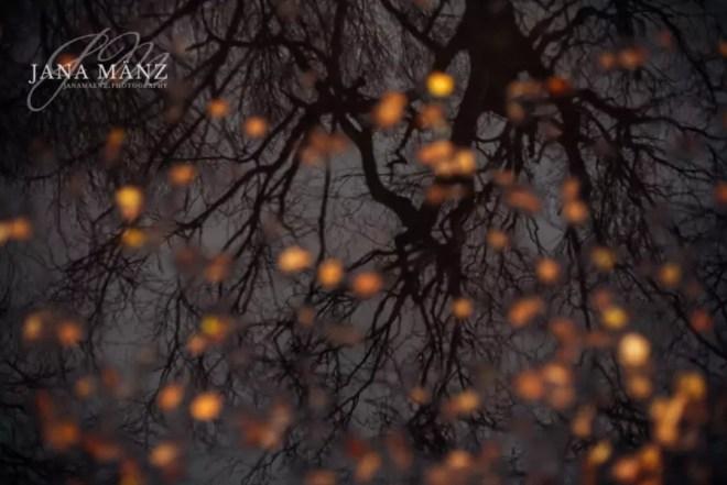 Naturfotografie und Landschaftsfotografie in der Sächischen Schweiz, Elbsandsteingebirge. Der Gamrig Vorlage und Motiv Caspar David Friedrich bekanntesten Werk: Der Wanderer über dem Nebelmeer.