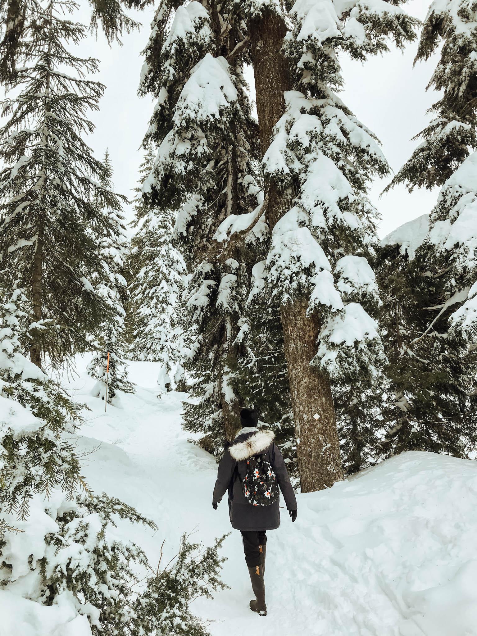 jana meerman bowen lookout hike-1