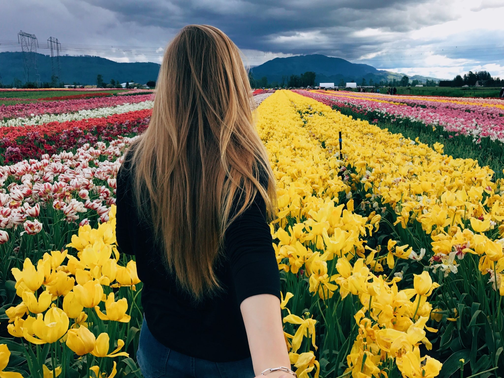 Visiting the Abbotsford Tulip Festival