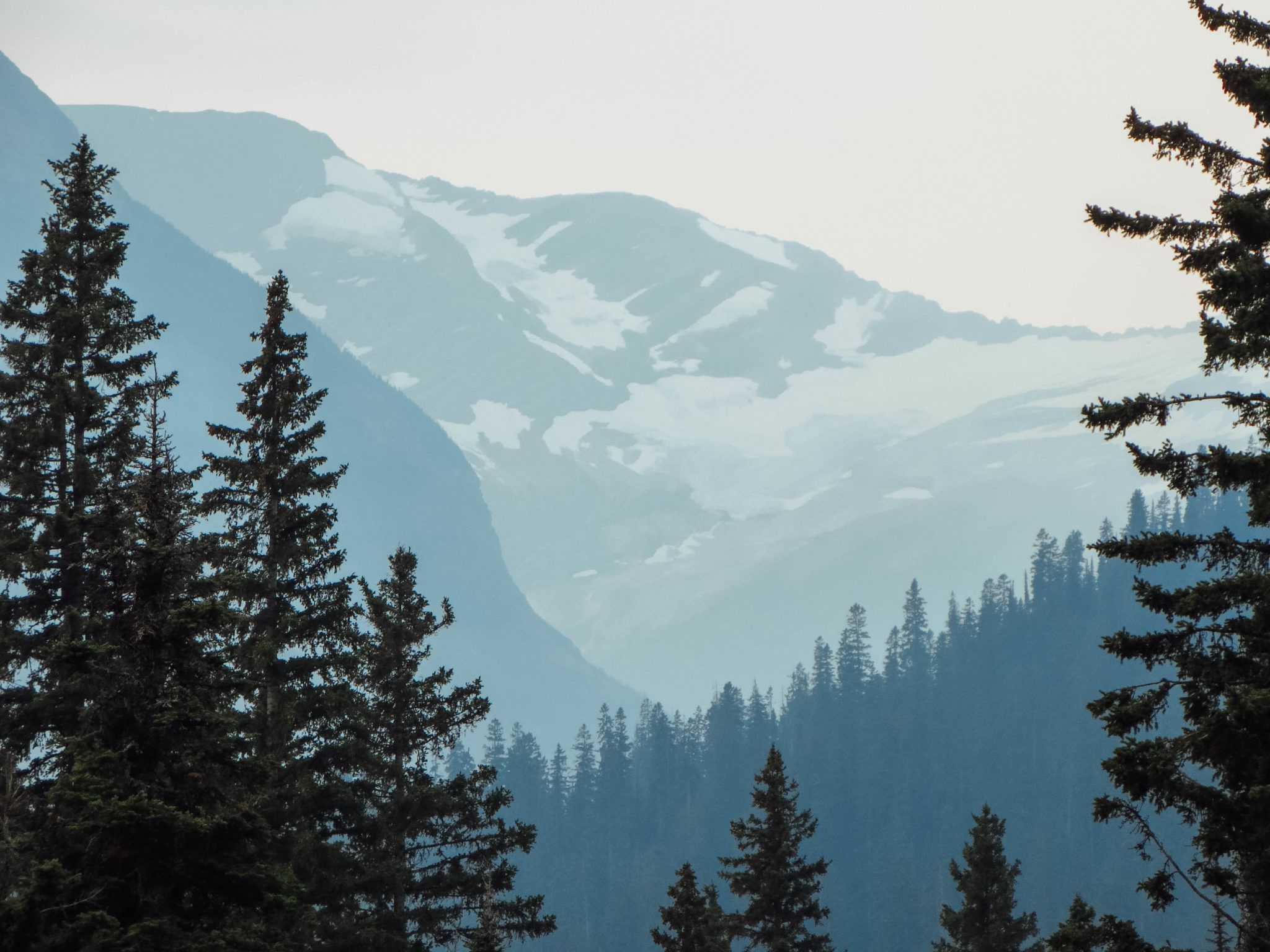 jana meerman glacier national park-12