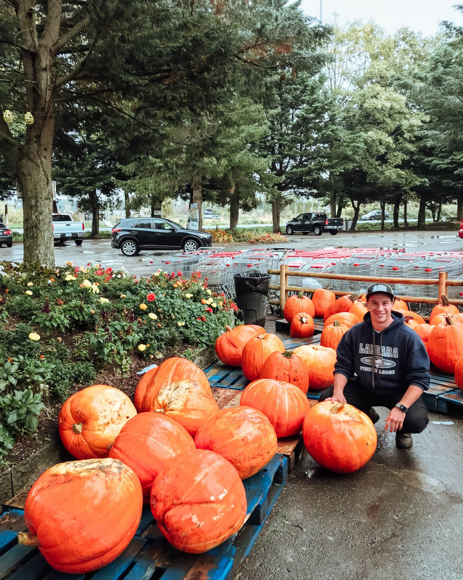jana meerman richmond country farms pumpkin patch-1