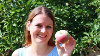 Apple Picking at Dr. Davies Farm
