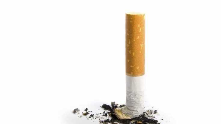 CIGARETTE/ BEEDI BUTTS ARE NOT HARMFUL TO ENVIRONMENT