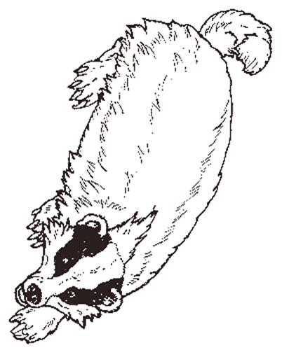 the mitten mural badger reversed jpg