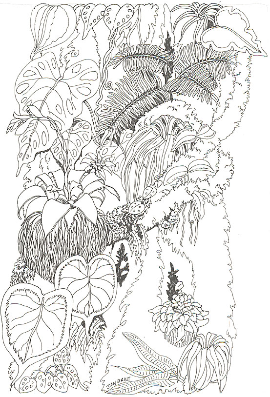 tree trunk colouring pages