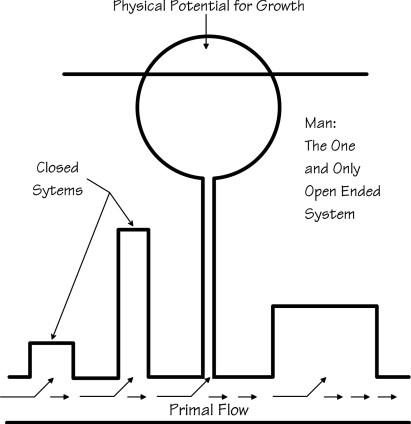 Diagram # 011 illustration