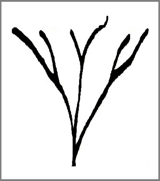 Diagram # 004 illustration