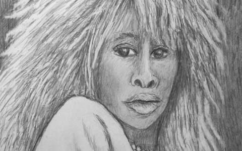 Tina Turner rock Star Portrait