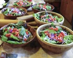 Lettuce from the garden
