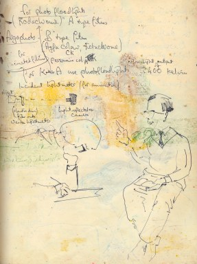 26 liverpool sketches 6, 1969, course work