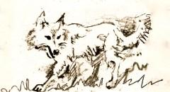 6 wolf detail