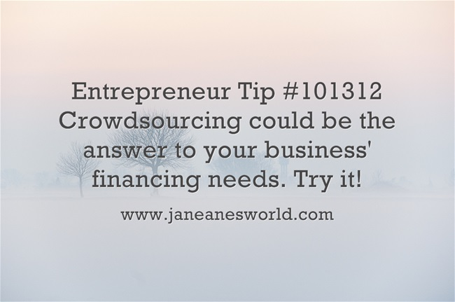 www.janenesworld.com entrepreneurs crowd source