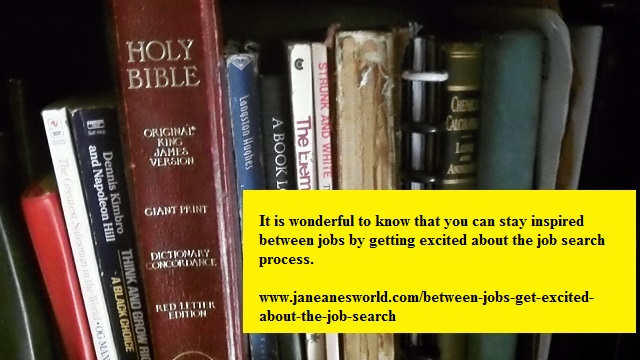 https://www.janeanesworld.com/between-jobs-get-excited-about-the-job-search