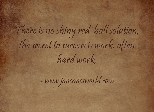 There is no shiny red  ball solution, the secret to success is work, so take action now and get it done.