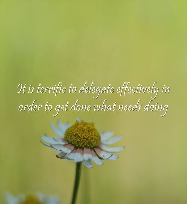 It is terrific to delegate effectively in order to get done what needs doing