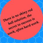 There is no shiny red  ball solution, the secret to success is work, often hard work.