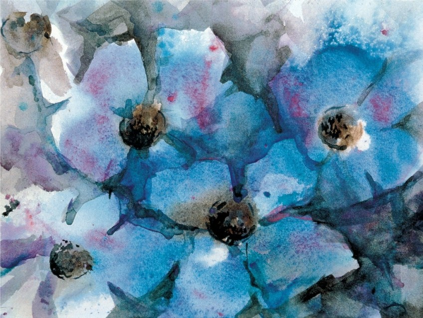 Blue Poppies, Lt. Edition 12x16 Giclee on Paper, $200