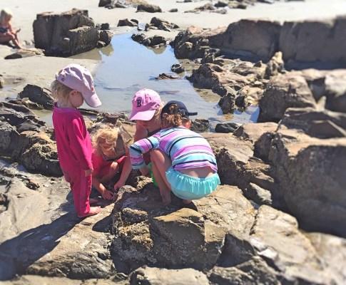 Gæsteindlæg:                         Familieferie i New England