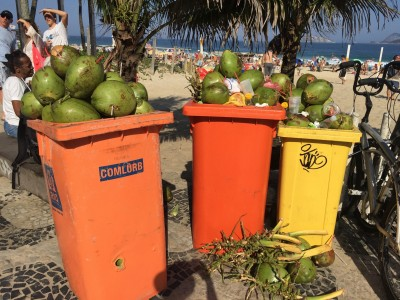 Kokosnødder i massevis