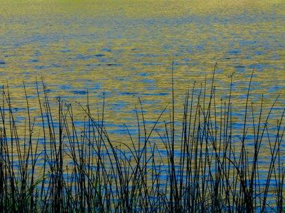TV-lagoon1-p2