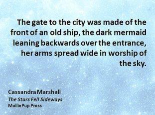 author, books, digital, ebooks, Jane Friedman, Porter Anderson, publisher, publishing, Writing on the Ether, Cassandra Marshall, The Stars Fell Sideways, MolliePup Press