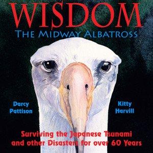 WisdomCover500x500
