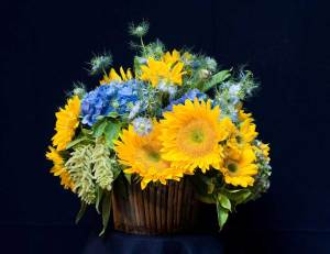 arranging sunflowers