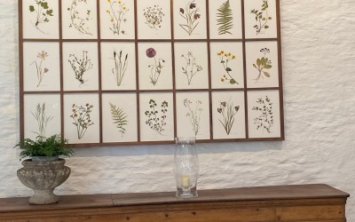 Visiting Thyme in Southrop