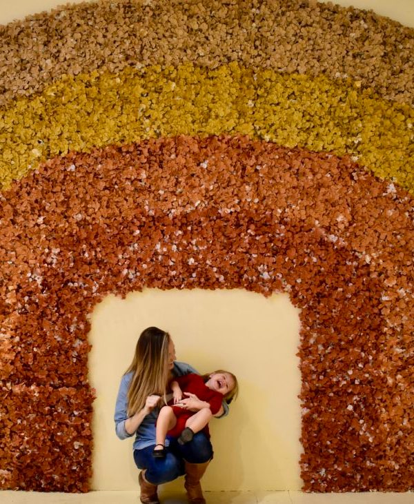 Flower Vault Houston