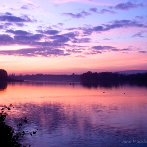 Photograph of a beautiful purple sunset over Chipstead Lake, Sevenoaks, by Jane Mucklow