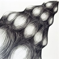 Shell Series, #1, charcoal, 24 x 24 inches