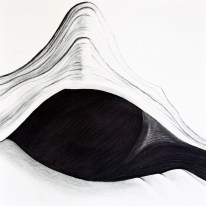 Shell Series, #8, charcoal, 24 x 24 inches