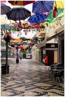 Umbrella Festival