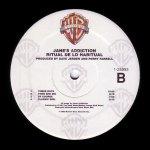 Ritual de lo Habitual Double LP Side B