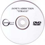 Strays Promo DVD